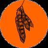 Acacia_polyacantha_100x100